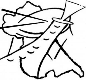 Colla Dolçainers i Tabaleters Ensembles de la Safor